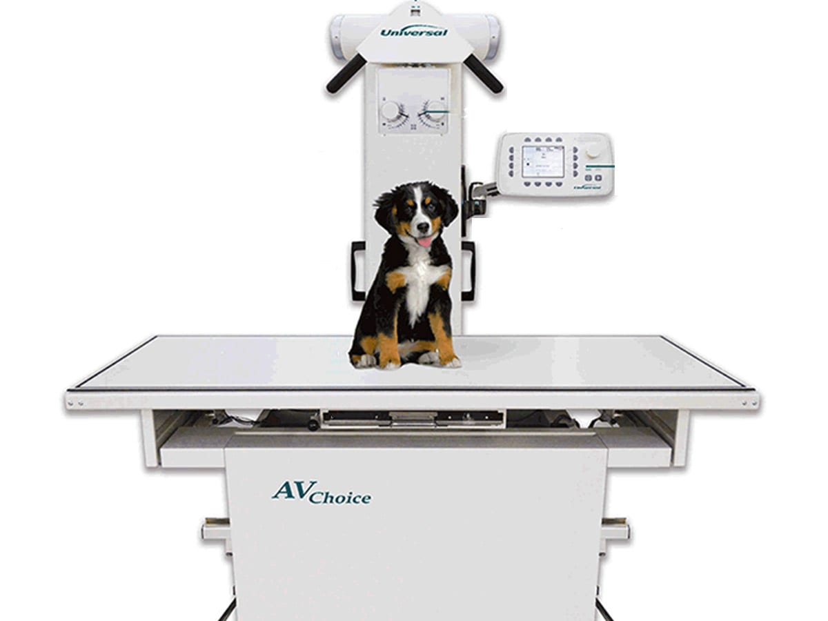 Apollo Animal Hospital uses state of the art Diagnostic Imaging Equipment